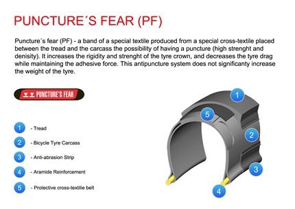 puncure´s fear (pf)_aj